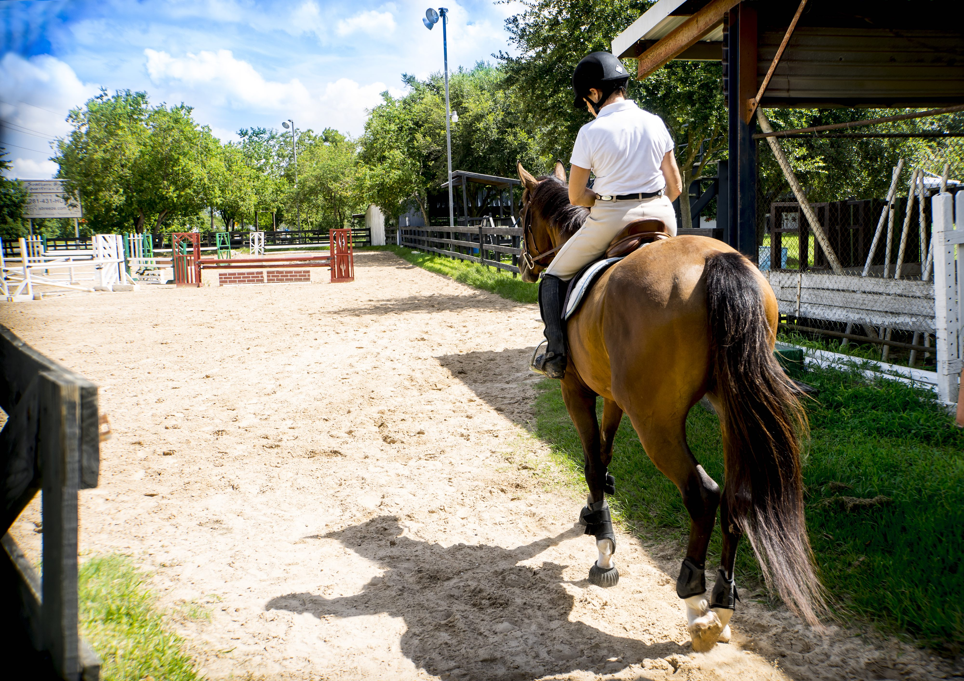 Horse Riding Instructor Cover Letter Device Test Engineer Cover